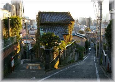 20081101mejirodai_030700_4