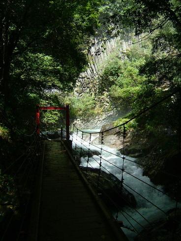 20080831kawazu_021ee